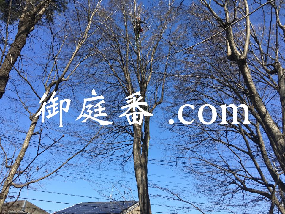 Oniwaban 御庭番.com